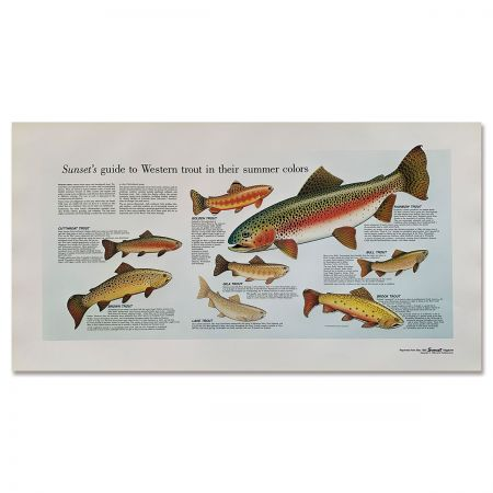 Sunset Magazine Poster: Western Trout